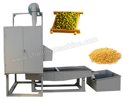 TFD_150_Mung_Bean_Peeling_Machine