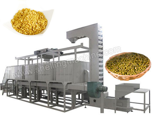 TFD_600_Mung_Beans_Peeling_and_Sorting_Machine