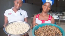 Raw Cashew Processing Industry in Ivory Coast