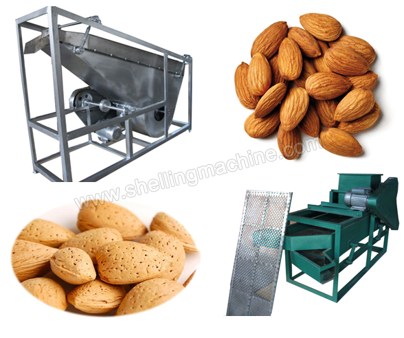 small almond cracking and shelling machine