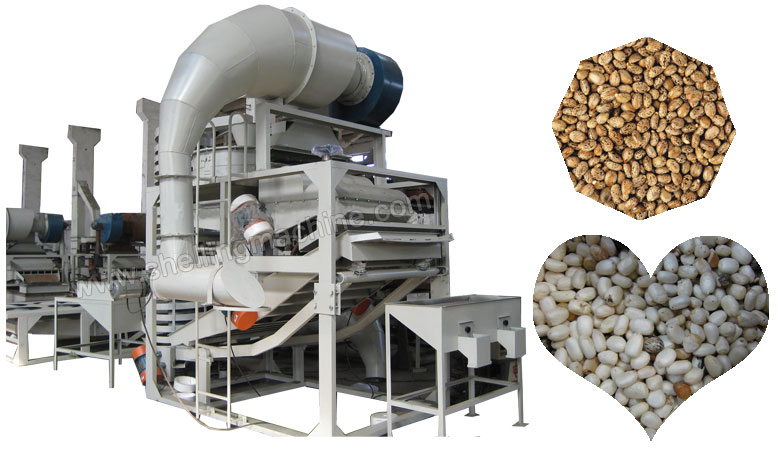 castor seeds hulling machine