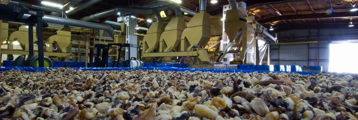 California_walnut_processing_plant