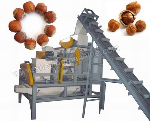 large_palm_hazelnut_cracking_machine