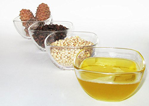pine nuts oil production cone removing shelling pressing