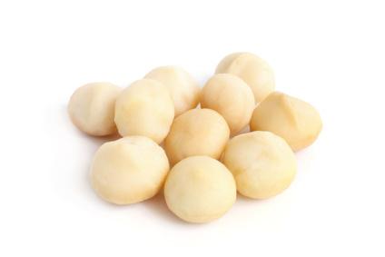 macadamia nut sorting