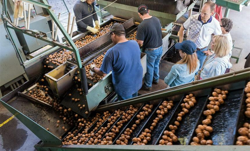 California walnut processing facility