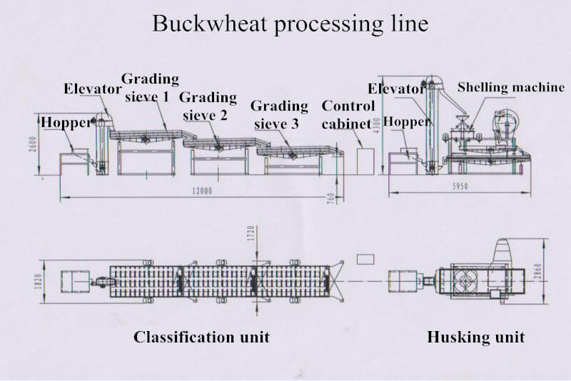 buckwheat processing line flowchart