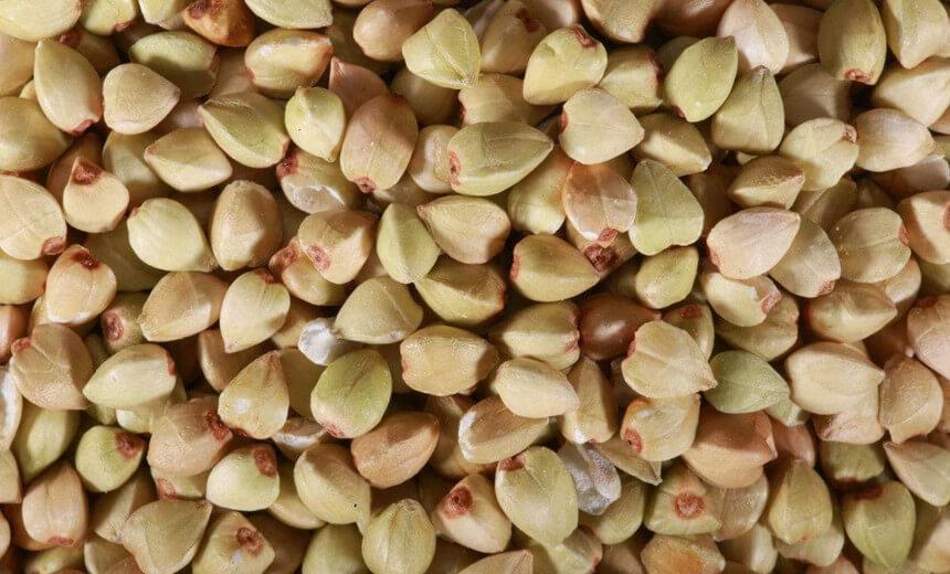 dehulled buckwheat kernels