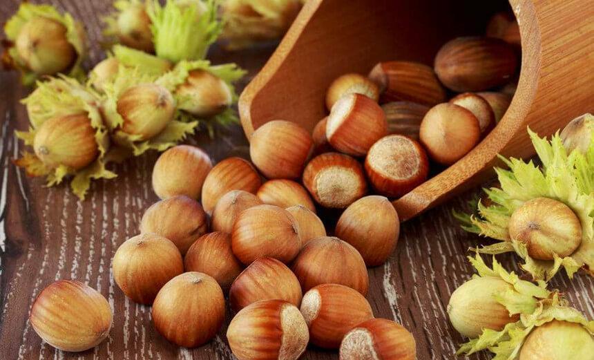 hazel nut processing