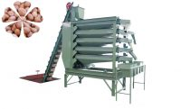peanut kernels sorting machine
