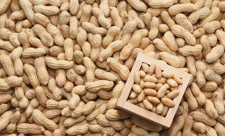 peanut shelling