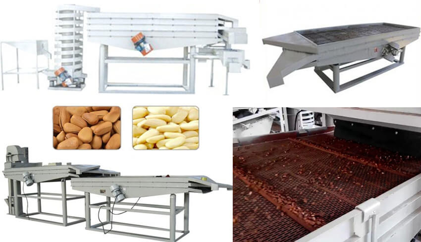 pine nut grading equipment