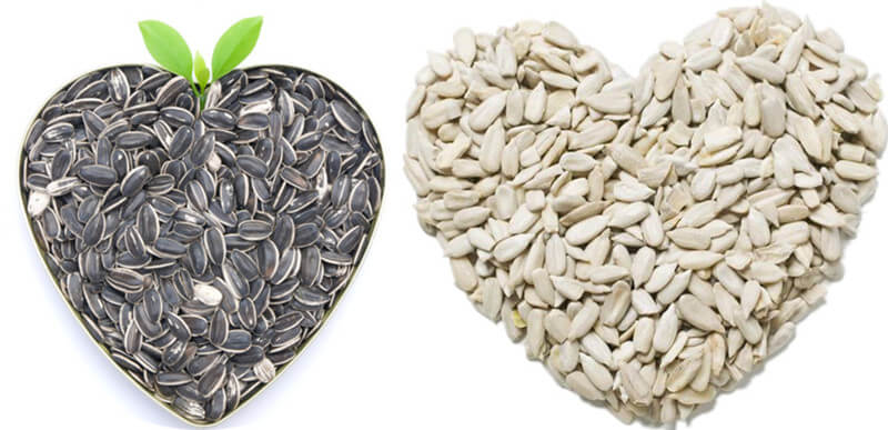 sunflower seeds and dehulled sunflower seeds